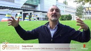 Les extraits du Sommet #033 – Serge Ahmed