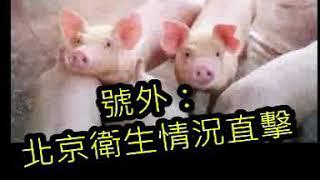 (號外!) 北京老鼠跌落天秤上天無言示之以象 20191114