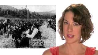 The Grapes of Wrath | Final Analysis | 60second Recap®