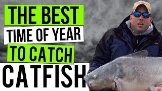 The Best Time To Catch Catfish : A Seasonal Guide To Catfishing