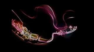 Darius & Finaly - Destination (Michael Mind Remix Full) HQ