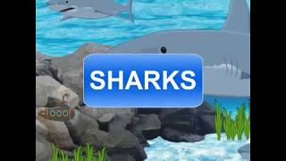 SHARKS poem for kids