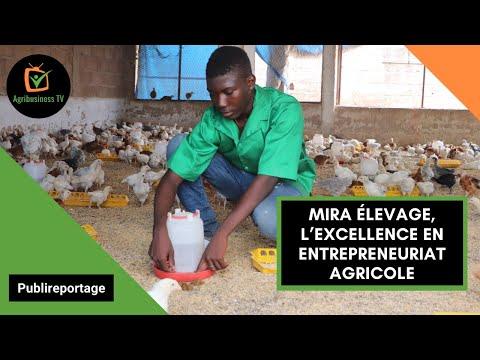 Burkina Faso : MIRA ÉLEVAGE, l'excellence en entrepreneuriat agricole Burkina Faso : MIRA ÉLEVAGE, l'excellence en entrepreneuriat agricole