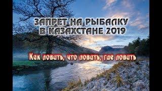 Рыбалка закон о любительской рыбалке в казахстане