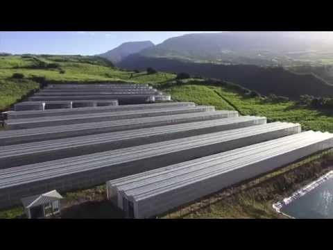Renewable energy could be an appropriete solution for the Reunion Island which lives under the influence of tropical climate and undergoes regular hurricanes that can be devastating. The effects of climate change may increase the fragility of the inhabitants of this territory. How to adapt? How to think and build differently to be more resilient? © AFD, 2015 https://www.facebook.com/AFDOfficiel