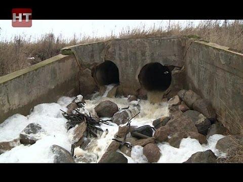 Эксперты выясняют причины появления неприятного запаха у питьевой воды в деревне Чечулино