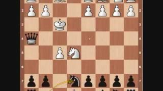 Chess Openings: Latvian Gambit
