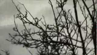 Antestor - Benighted (Fan Music Video)
