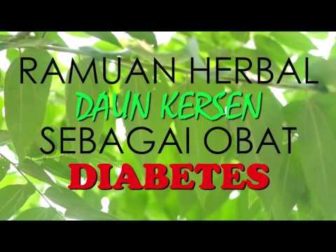 Video Resep Ampuh Daun Kersen Untuk Menyembuhkan Diabetes