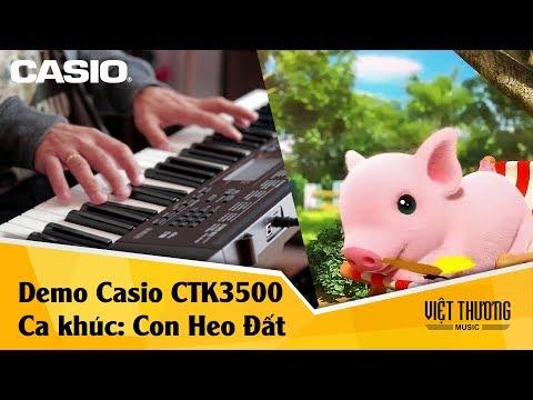 Con heo đất - Đàn organ Casio CTK3500