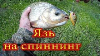 Река урюк башкирия рыбалка