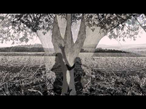 Jirikovo Videni - JIŘÍKOVO VIDĚNÍ - V poli strom (2013)