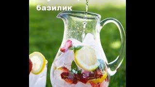 ТОП 13 Освежающих Напитков, Которые Легко Приготовить Дома
