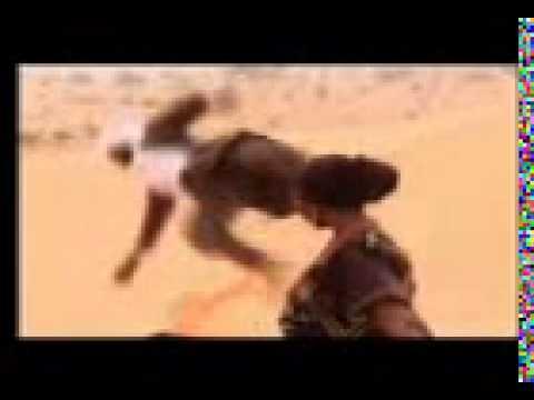 Hausa song lyrics by  Umar M Sharif