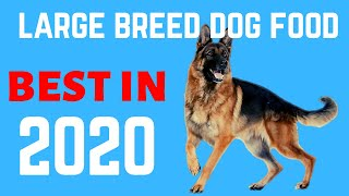✅Best Dog Food For German Shepherd 2020  | 5 best Large Breed Dog Food.