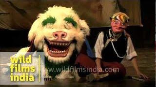 Adorable Snow Lion Dance by Tibetan performers