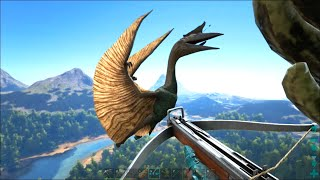 Ark survival evolved tapejara solo tame tapejara trap ark survival evolved 19 quetzal sniper fortress malvernweather Image collections
