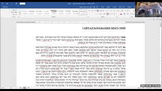 תלמוד ירושלמי מסכת שביעית פרק ב הלכה ז