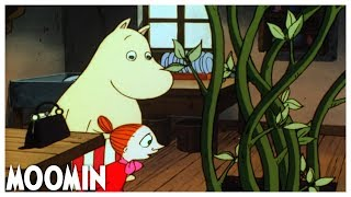 Adventures from Moominvalley EP2: The Magic Hat   Full Episode