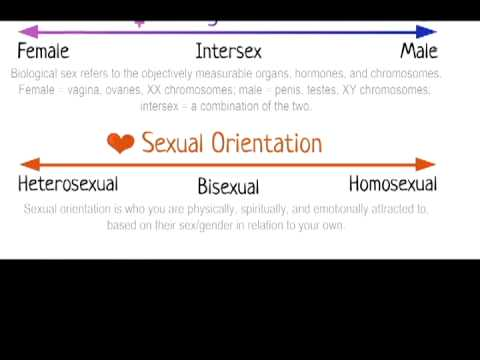 <!--:en-->Sex Ed with Mel - LGBT  <!--:--><!--:es-->Educación Sexual con Mel - LGBT<!--:-->
