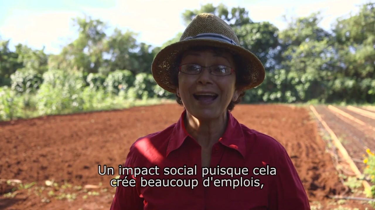 Révolution durable : de Bruxelles à Cuba