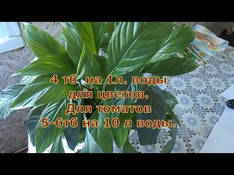 ЖИВИТЕЛЬНАЯ  СИЛА для Растений. ( Янтарная кислота.)