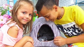 Кошка родила котят Покупаем ДОМИК играем с котятами Funny Cats and Kittens Распаковка ЛОЛ сюрприза