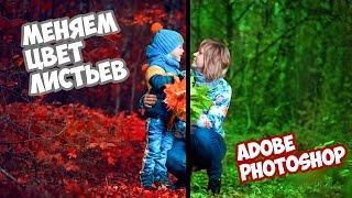 Меняем цвета (красим листья) в Photoshop