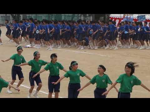 2019年 雲雀丘学園中学校 応援合戦 緑団