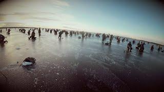 Зимняя рыбалка ладожского озера 2019