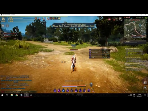 Black Desert Online (NA) Elite Farming Tonight on Dark Knight Stream