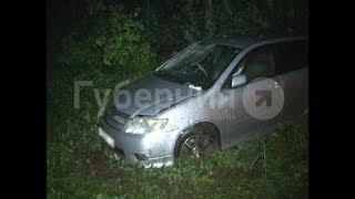 Нетрезвый водитель пытался обогнать иномарки в Хабаровском районе и оказался в кювете. Mestoprotv