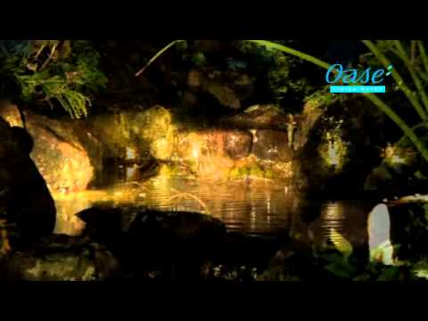 OASE   Garten- und Teichbeleuchtung   Deutsch