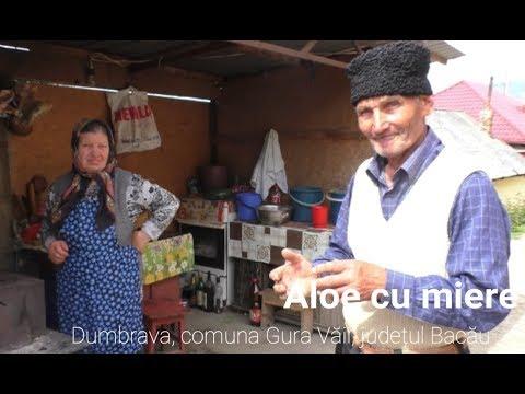 Srpski jezik padezi kontrolni