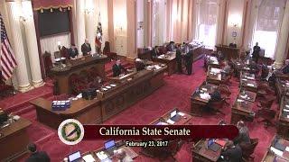 RAW VIDEO: California State Sen. Janet Nguyen Removed From Senate Floor