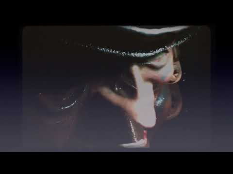 The Lickerish Quartet - Snollygoster Goon video