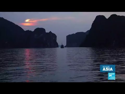Paradise lost: mass tourism leads to pollution crisis in Ha Long Bay