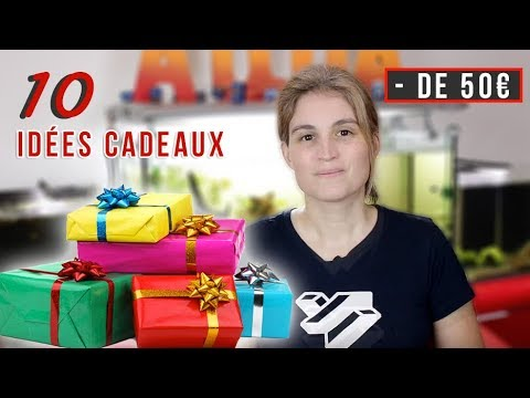 10 idées cadeaux à moins de 50€ pour l'aquarium