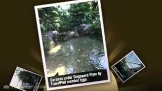 preview picture of video 'Singapore Flyer and Night Safari Tyga's photos around Singapore, Singapore (night safari blog)'
