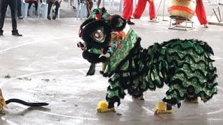 preview picture of video 'Lion Dance Video 2013 吉隆坡威武金昇龙狮团 傳統舞獅比賽'