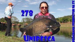 Programa Fishingtur na Tv 278 - Unipesca Esportiva