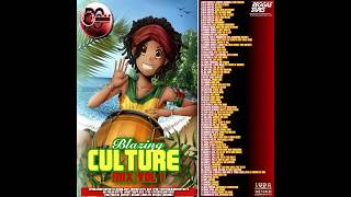DJ DOTCOM BLAZING CULTURE MIX VOL 1 90'S HITZ PLATINUM SERIES