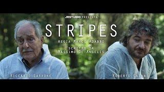 STRIPES / cortometraggio