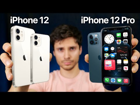 iPhone 12 vs iPhone 12 Pro/12 Pro Max! Which Should You Buy?