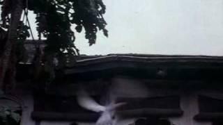 Ishq Ne Todi Sar Pe Qayamat - Junoon (1978).avi