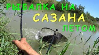 Ловля карася весной в ставропольском крае
