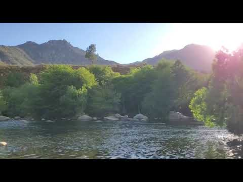 Peaceful timelapse of the river in the afternoon