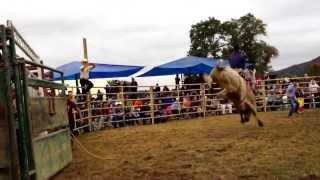preview picture of video 'Jaripeo en Newburgh ny 6 de October'
