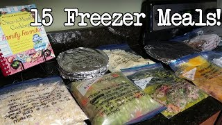 COOK WITH ME | FREEZER MEALS | DOLLAR TREE COOKBOOK