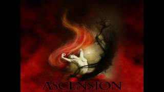 Ascension - Immaculate Conception
